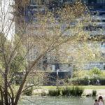 Aplus-architecture-bassin-jacquescoeur-montpellier-archilovers-architecturephotography-temarchi-mc-lucat-2017Aplus-architecture-bassin-jacquescoeur-montpellier-archilovers-architecturephotography-temarchi-mc-lucat-2017